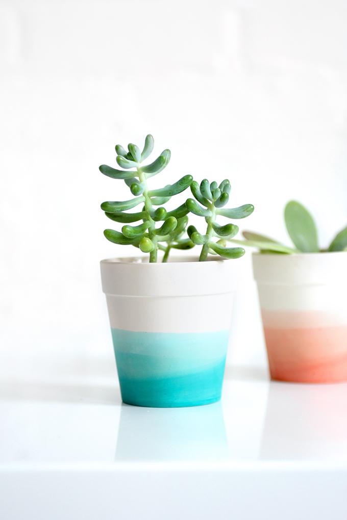 Dowling Real Estate Diy Dip Dye Pots